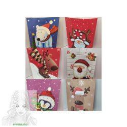 Karácsonyi vagy Mikulási papír ajándék táska, 40x30x12 cm,